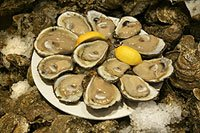 Oysters ready for consumption.